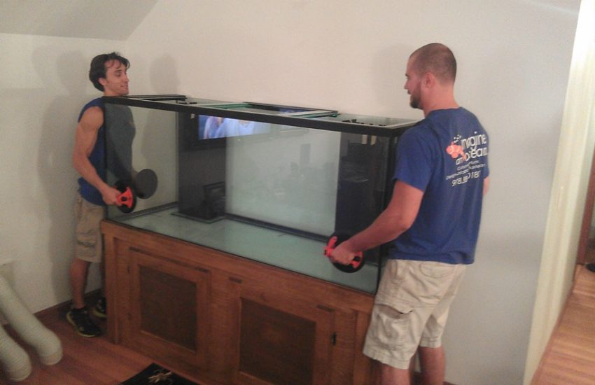 Aquariums-Moved-Safely