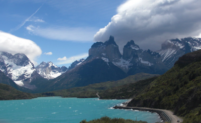 Torres del Paine National forest
